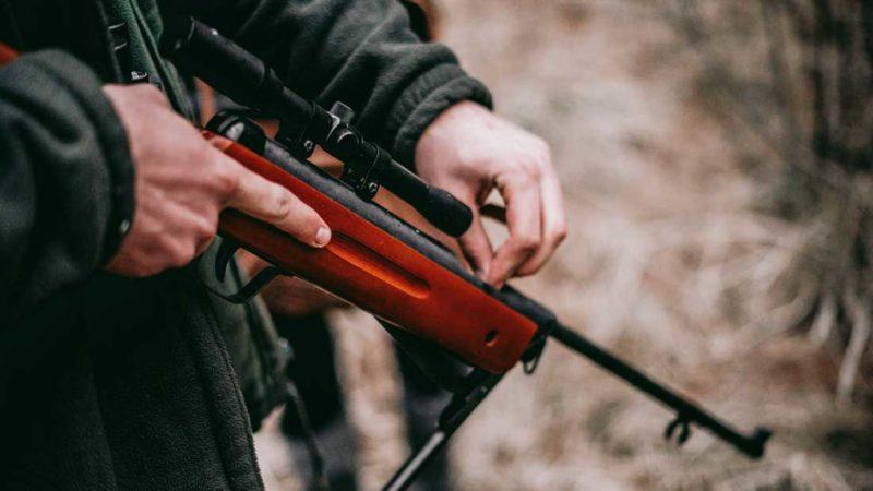 Covid19 : Activités de chasse
