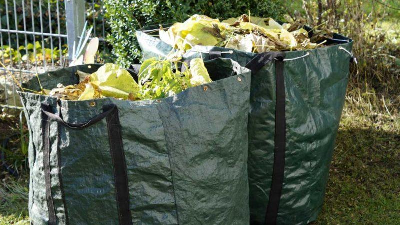 Que faire des déchets verts ?